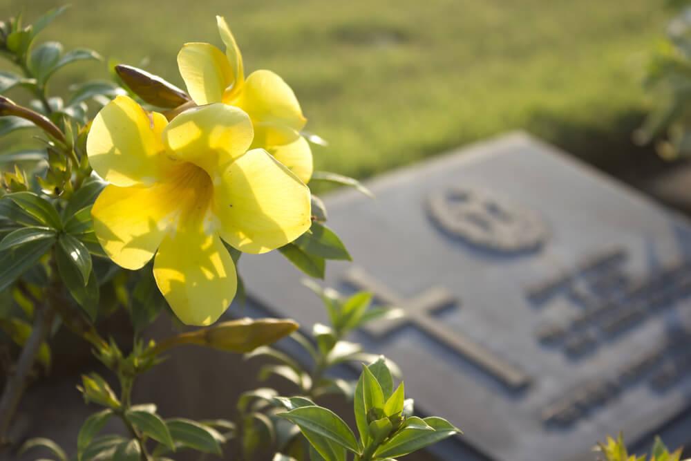 Grab mit Blume